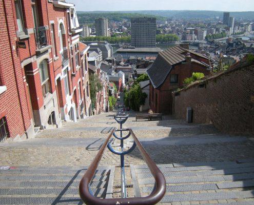 Humidité Ascensionnelle ou Mérule - Dromursec - Liège